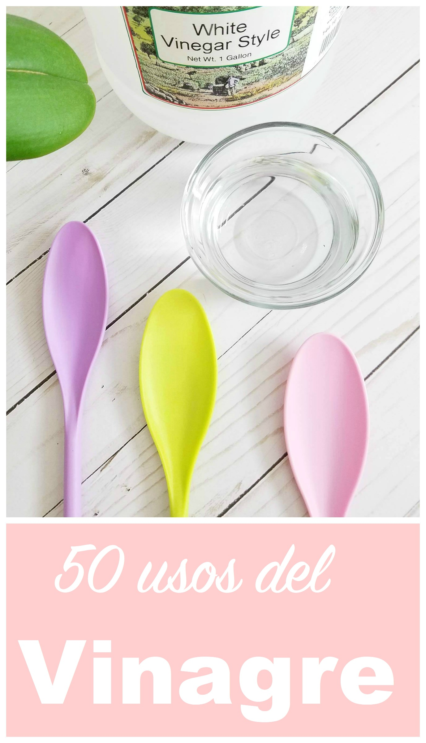 Los 50 Usos del vinagre by Alicia Borchardt