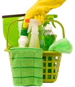 desinfectar la casa natural