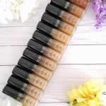 Base de Milani Conceal + Perfect 2 en 1 Reseña y Swatches.