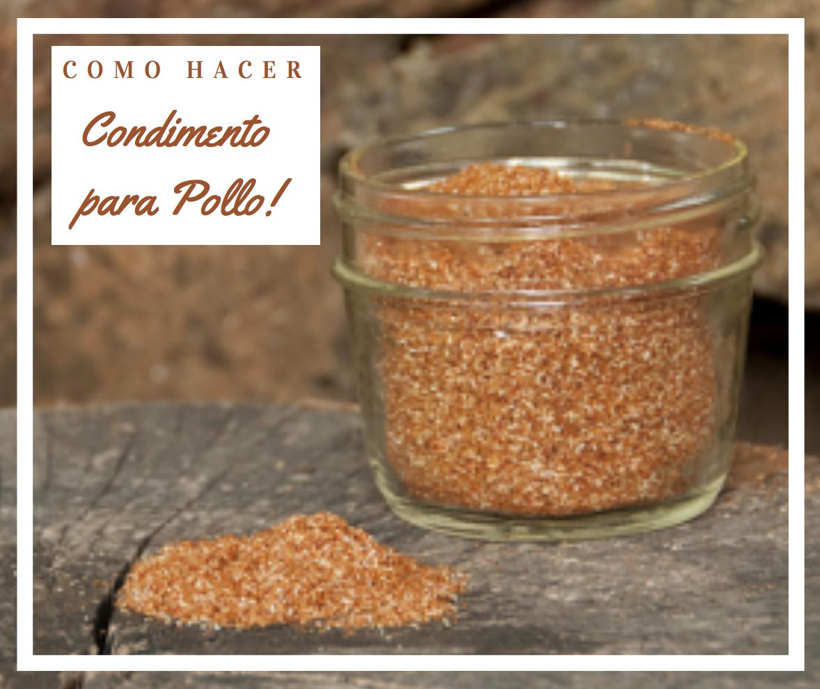 Como hacer condimentos caseros para sazonar Pollo by Alicia Borchardt