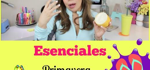 esenciales primavera y verano by aliciaborchardt