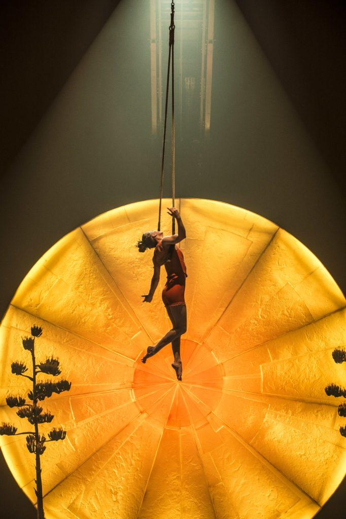 cirque du soleil luzia review blog chicago